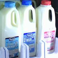 Hunger Hero Milk