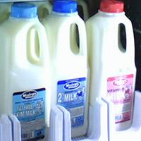 Hunger Hero Milk