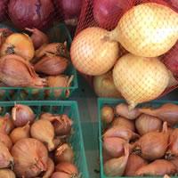 HFS Farmers Market Produce