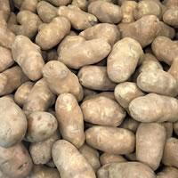 Garden Potatoes