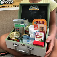 Photo of a Kid Pack