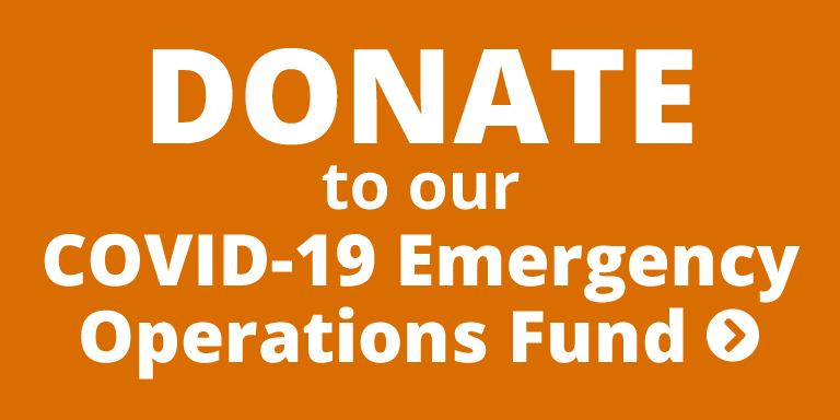 Covid-19 Donate Button