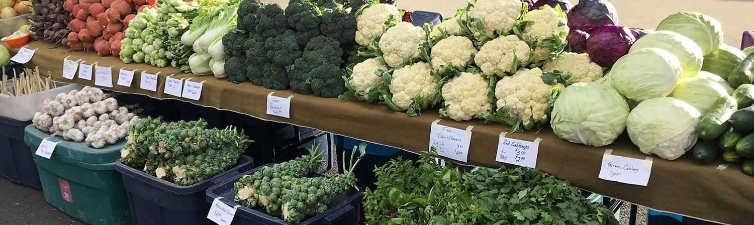 Senior Farmers Market Coupons