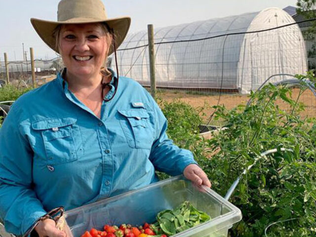 Soil, Seeds & Sunshine: The Roots of Good Nutrition